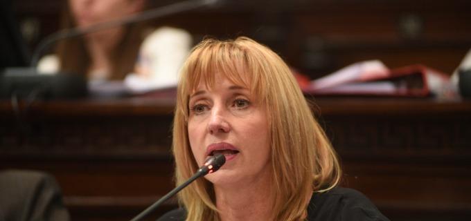 """La senadora radical Caroglio apoya la reforma judicial que se debatirá el martes próximo: """"Es una ley importante para el mendocino porque va a dar agilidad en la Justicia"""""""