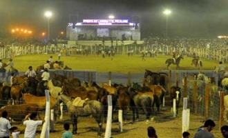 Con más caballos! El próximo 3 y 4 de febrero se realiza edición de la 17º Fiesta Nacional de las Destrezas Criollas y el Folklore en Médano de Oro