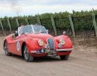 Legendarios motores rugirán este viernes por Tupungato en una nueva edición del ya clásico Rally de las Bodegas