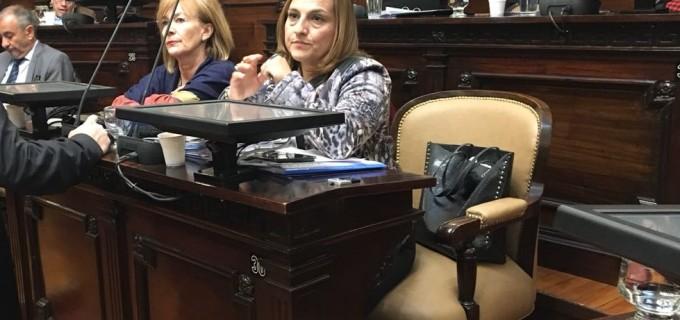 La diputada Segovia quiere citar a los ministros Kerchner, Nieri y Allasino para analizar la situación socioeconómica y la incidencia en las cuentas públicas de Mendoza